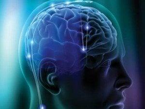 Αμερικανοί ερευνητές έκαναν τον εγκέφαλο… διάφανο