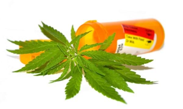«Θεραπευτική» κάνναβη ή βήμα για τη νομιμοποίηση των ναρκωτικών;